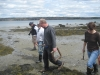 Clam survey at Hadley Point