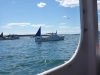 Isleford lobster boats