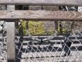 Wooden lobster trap