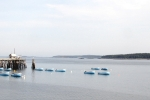 Jonseport skiffs