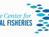 Maine Center for Coastal Fisheries Logo
