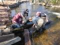Fish passage maintenance