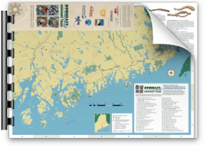 Downeast Fisheries Trail Brochure Map - Web Version