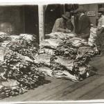 Dried cod tied up in bundles